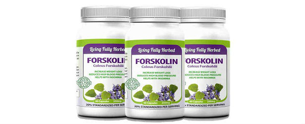 Forskolin 250mg Living Fully Herbed Product Review