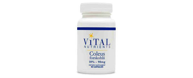 Vital Nutrients Coleus Forskolin Review