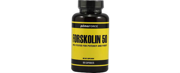 Forskolin 50 By PrimaForce Review 615