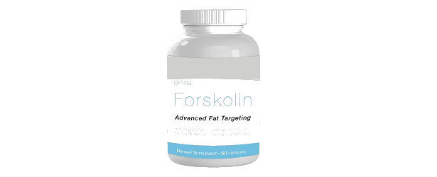 Gingabody Forskolin Review