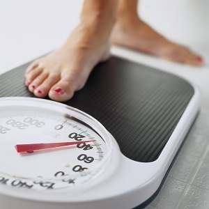 Forskolin for Weight Loss?